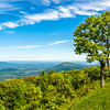 Virginia's Shenandoah Valley