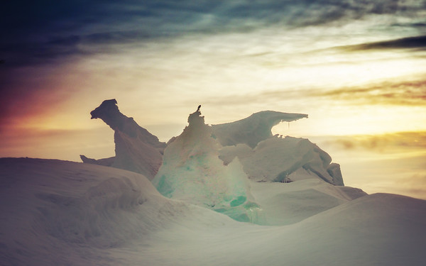 That Dragon in Antarctica