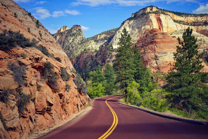 'Signature Red Roads' ~ Zion National Park, UT
