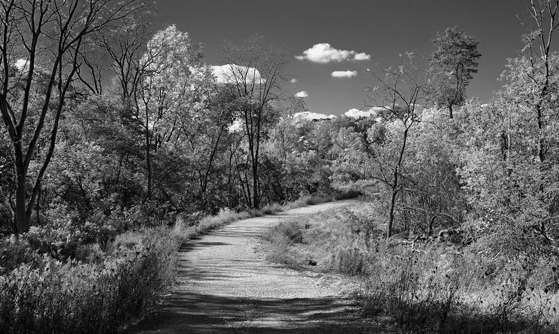 Eramosa Karst Path