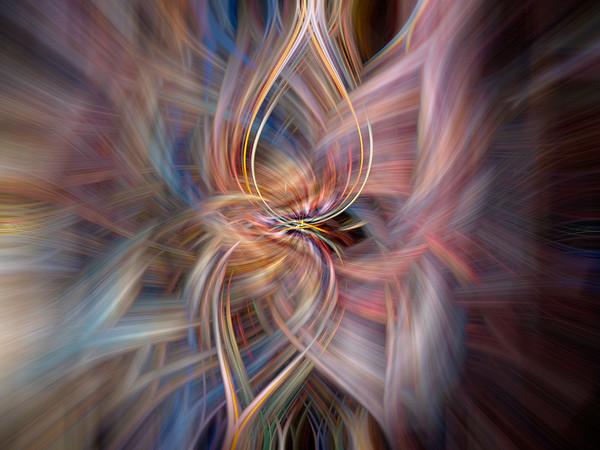 Starfish net abstract