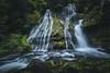 Panther Falls, WA.