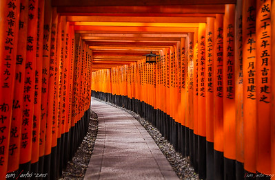 Thousand gates || Kyoto - Japan