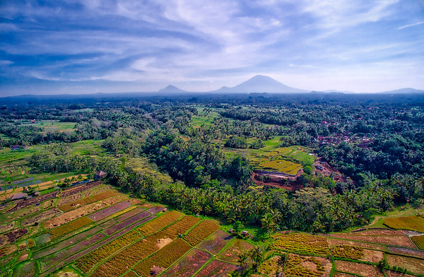 Soaring Over Bali