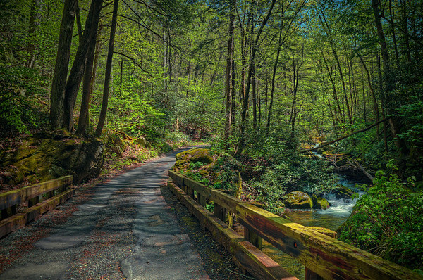 'Roaring Fork Drive' ~ Great Smoky Mountains National Park, TN