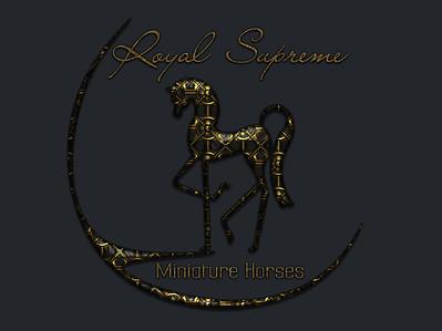 logo RSMH