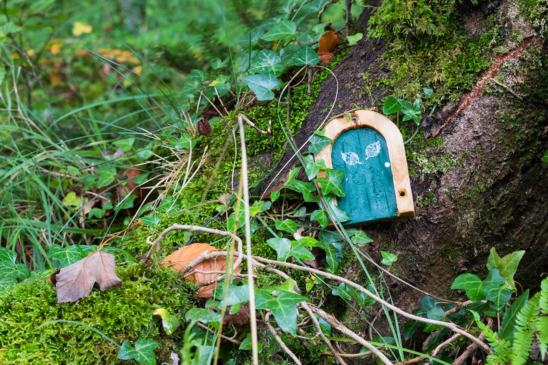 Fairy Door, Donegal, Ireland