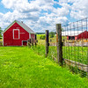 Fence & Outbuildings