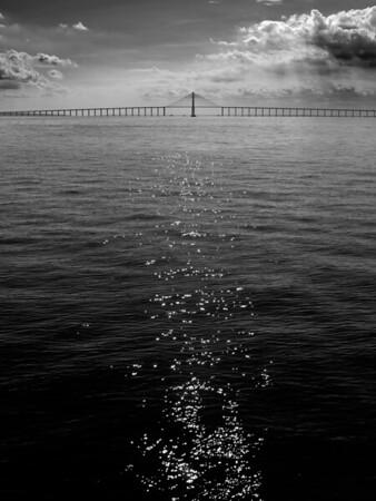 Manaus-Iranduba Bridge