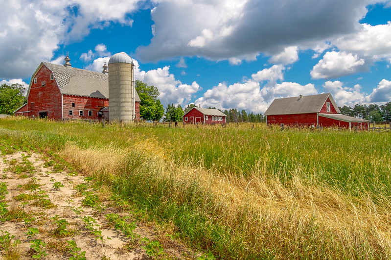 Old Red Barn & Outbuildings