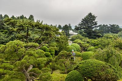 Les jardins de l'empereur, Hakone