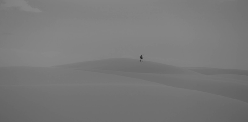 Alone In The Snowy Sands