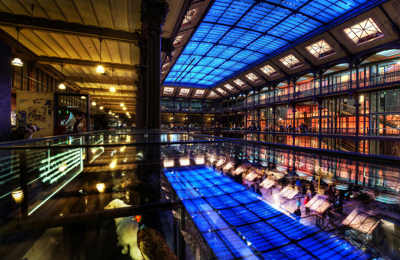 """<h2>Reflections in the Museum</h2> <br/>Here we are in the Museum of Evolution in Paris again — one of my favorite places! I think we all spent about 4 hours in here, going crazy! There are countless interesting angles and ways to shoot it…<br/><br/>Anyway, I'm very excited about my recent France photos, so I'm going to post three in a row… get ready for another one tomorrow! :)<br/><br/>- Trey Ratcliff<br/><br/><a href=""""http://www.stuckincustoms.com/2012/12/24/three-from-paris/"""" rel=""""nofollow"""">Click here to read the rest of this post at the Stuck in Customs blog.</a>"""
