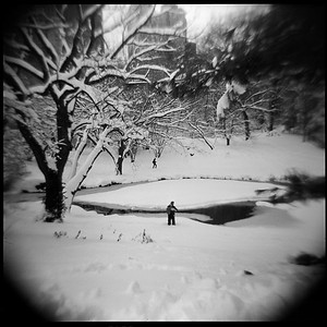Serenity, Central Park