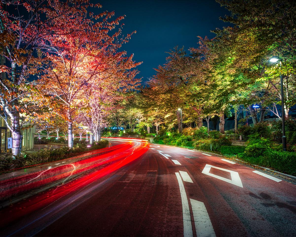 Autumn Night Streets In Tokyo