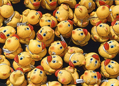 Rubber Duckies, Annual Race for Charity.
