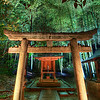 "<h2>Hidden Temple in Bamboo at Night</h2> <br/>This place was pretty far off the usual beaten path but I was glad to find it!<br/><br/>In Kyoto, there is a wonderful and unexpected temple that weaves through an old bamboo forest.  It weaves up, down, and around hills with warm, calming bamboo swaying about.  Here and there, little temples, urns, and benches are placed.  Everything is delicately lit to add to the mood.  And just beyond where the lights are, the bamboo forest is pitch black and full of wonderful mystery.<br/><br/>- Trey Ratcliff<br/><br/><a href=""http://www.stuckincustoms.com/2011/04/11/webinar-registrations-fully-open/"" rel=""nofollow"">Click here to read the rest of this post at the Stuck in Customs blog.</a>"