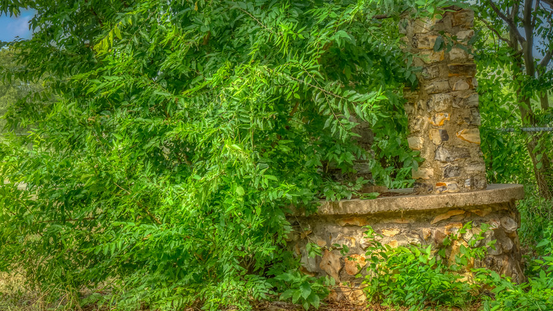 Overgrown_Water_Well
