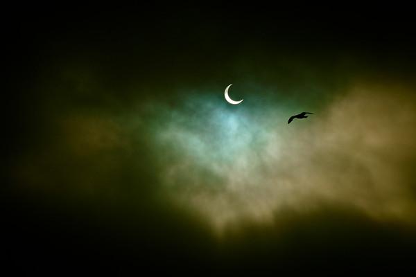 Venice Eclipse 5/20/12