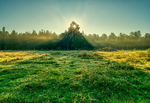 Morning sun and morning mist