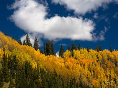 Colorado Autumn Ridge