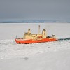 Following the Icebreaker