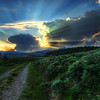 """<h2>The Dirt Road to the Nuclear Blast Site</h2> <br/>I felt lucky to have a wild sunset in Yellowstone! I've probably been to Yellowstone 5 or 6 times, and you never know what you'll get! This night was perfect… I had woken up early, so I was tired by mid-afternoon.. I took a catnap in my car and woke up to see the sun was going down in less than an hour! So, I looked at my map and figured out some good spots to go. While walking down this little dirt road, I thought the sky was too perfect to ignore, so I set up for a quick shot!<br/><br/>- Trey Ratcliff<br/><br/><a href=""""http://www.stuckincustoms.com/2009/10/28/the-dirt-road-to-the-nuclear-blast-site-and-onone-plugin-suite-5-avail/"""" rel=""""nofollow"""">Click here to read the rest of this post at the Stuck in Customs blog.</a>"""