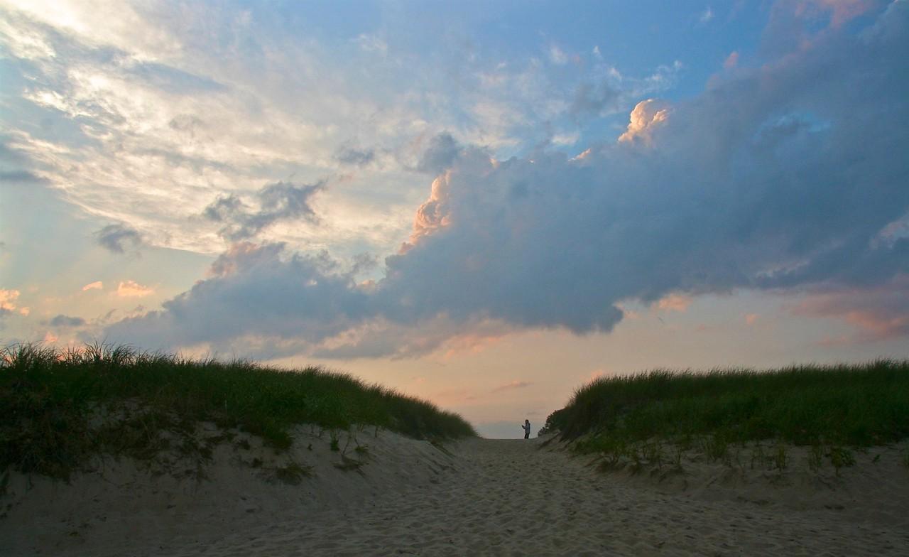 amagansett dune