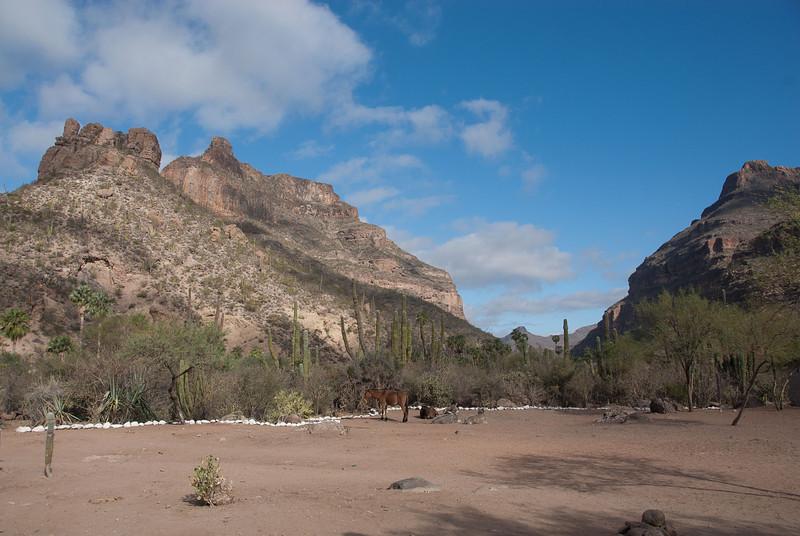 MVCDS Winterim - Baja 2011 Filename: TOP_7733