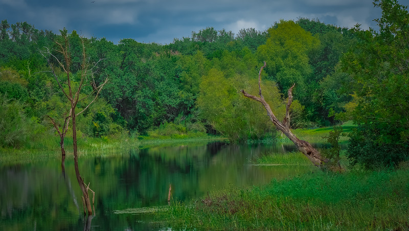 Lake_Cove_Reflections