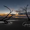 Boneyard, BULLS ISLAND, SC