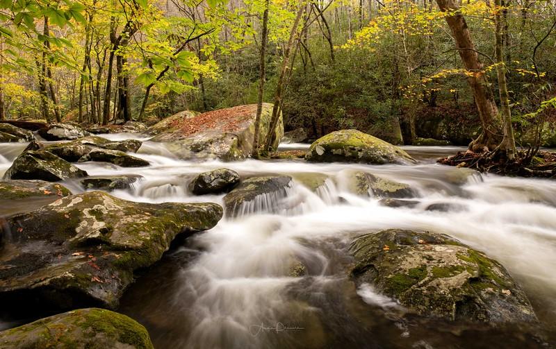 Great Smokies River Scenes
