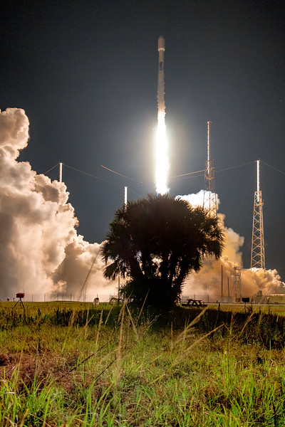 Falcon 9 ascending above a palm tree located on SLC-40, wreathed in condensation from super-chilled LOX (liquid oxygen) and RP-1 (rocket propellant - 1)in its fuel tanks.