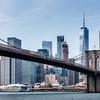 Brooklyn Bridge & the Financial District