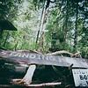 End Of the Trail - Tofino British Columbia Canada