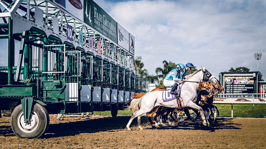 Horses coming out of the gate