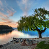 """<h2>Tree at the Serene Lake</h2> Queenstown, I miss you!  The summer here in Texas has been bitter-hot.  I remember the long run I had along your shores...  comparing that with my 100-degree run here in Texas that just makes me want to curl up into a fetal ball and cry...  When I was there in Queenstown, I took to waking up about an hour before the sunrise and brewing a whole pot of coffee.  And then, I would just the take the POT in the car with me and drive around.  The lake can be pretty still in the morning, and that is when I grabbed this one... I'm jealous of my friends Gordon Laing and Eden Brackstone who get to spend almost every day in these environs!  - Trey Ratcliff  Read more <a href=""""http://www.stuckincustoms.com/2011/06/07/tree-at-the-serene-lake/"""">here</a> at the Stuck in Customs blog."""