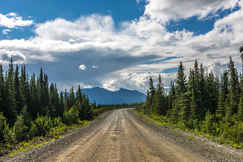 Winding Denali Highway