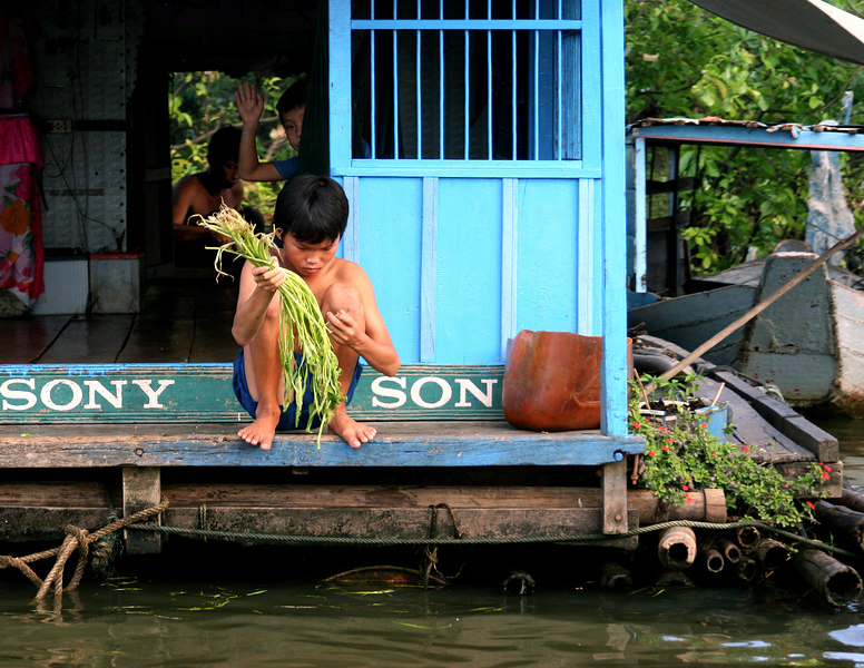 Siem Reap, Cambodia. Floating village. A boy washes food from his home in the floating village on Tonle Sap Lake