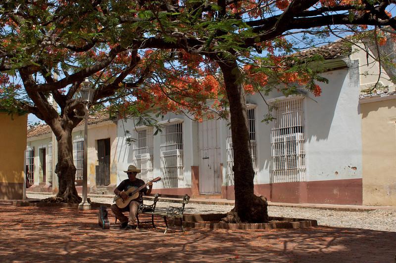 Trinidad Plaza Performer