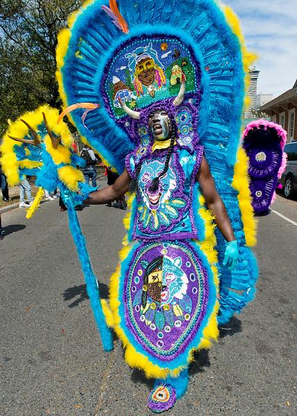 Mardi Gras Indians-0822