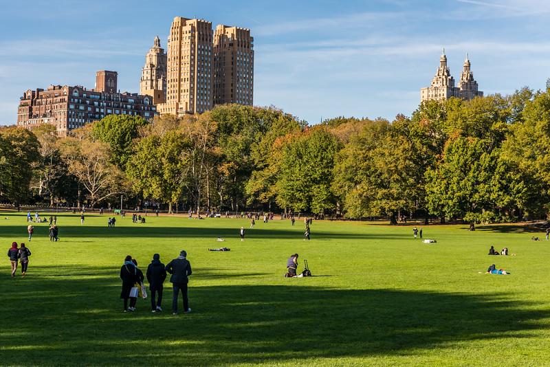 Central Park Fall Sun