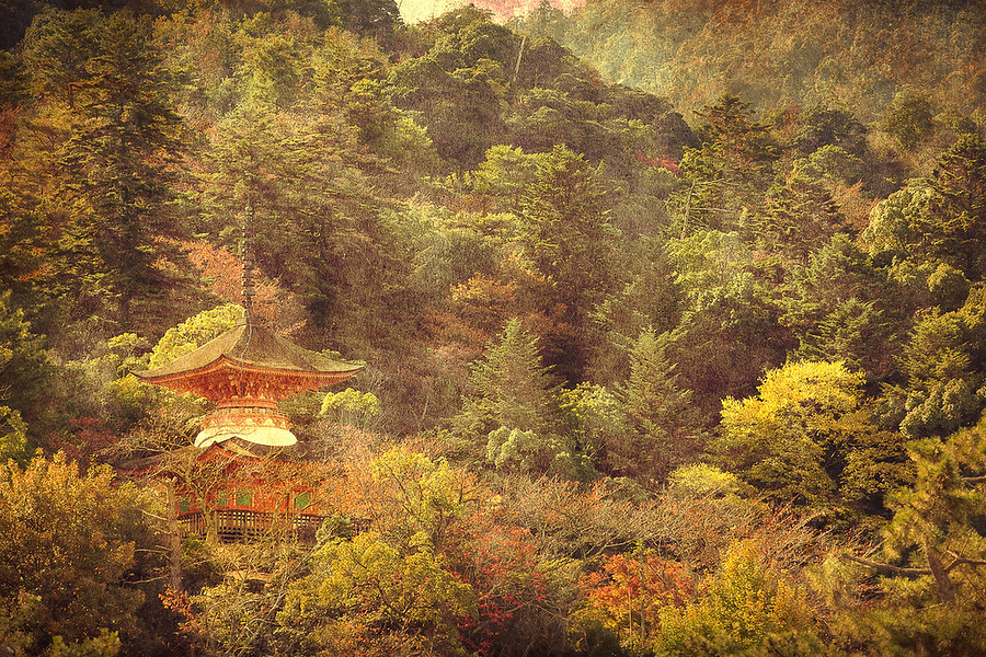 Temple in the Trees at MiyajimaThis is a shot taken at Miyajima Japan of one of the many temples built around and in the mountain.See this photo at AlikGriffin.com