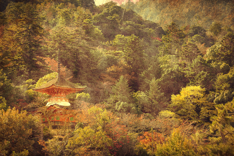 "<h2>Temple in the Trees at Miyajima</h2> <p>This is a shot taken at Miyajima Japan of one of the many temples built around and in the mountain.</p>  <p>See this photo at <a href=""http://alikgriffin.com"">AlikGriffin.com</a></p>"