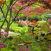 The Netherlands, The Hague - Japanse Garden