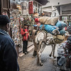 Local Transport - Fes Morocco