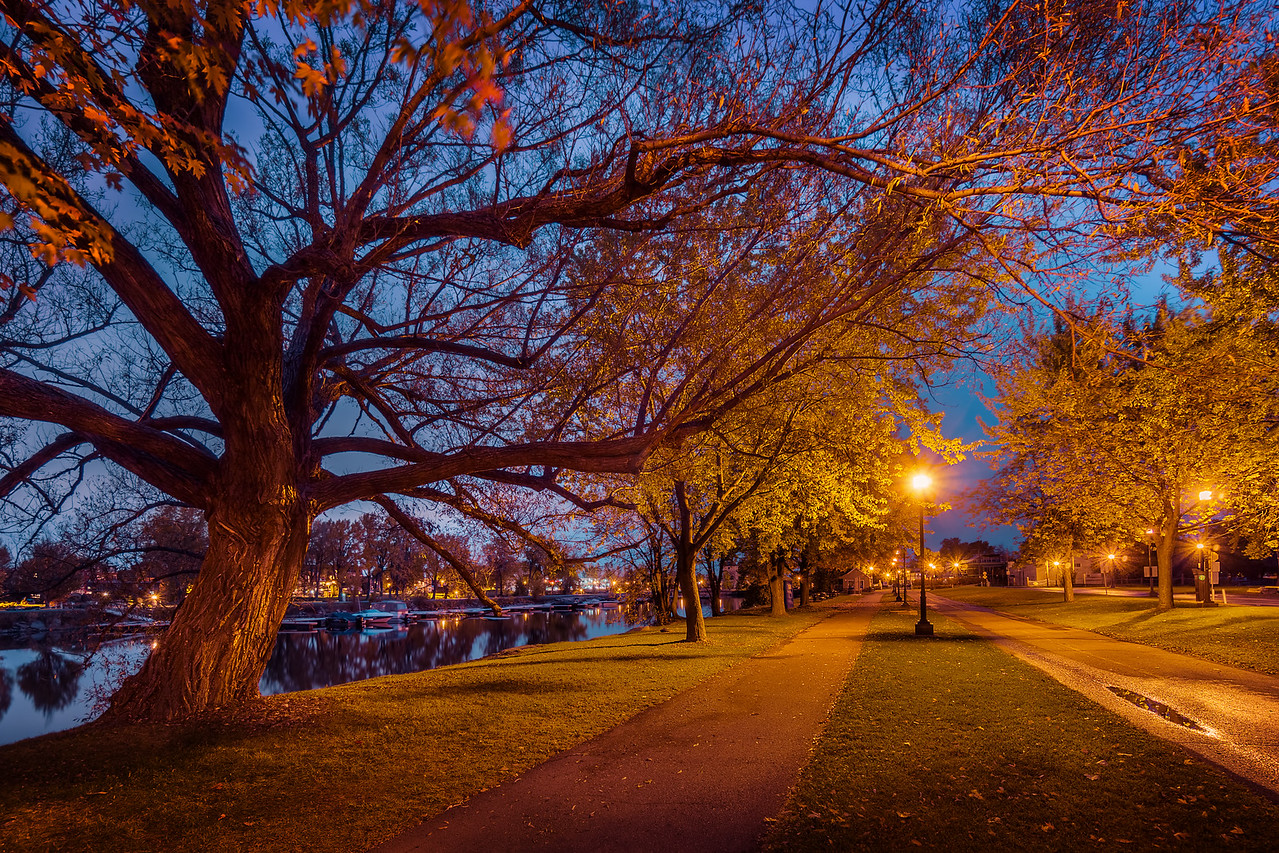 Colorful Fall Evening (Montreal)