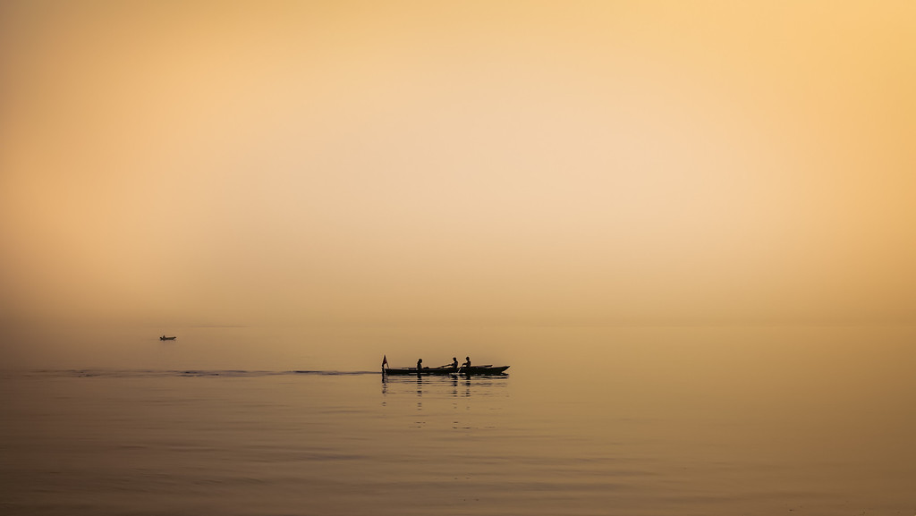 Rowing in the mist