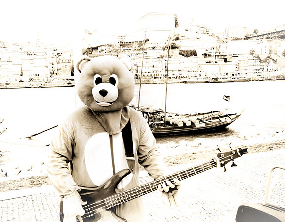 A Bear in Porto