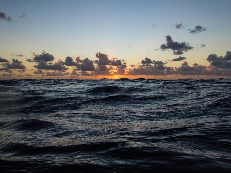 Great Barrier Dawn